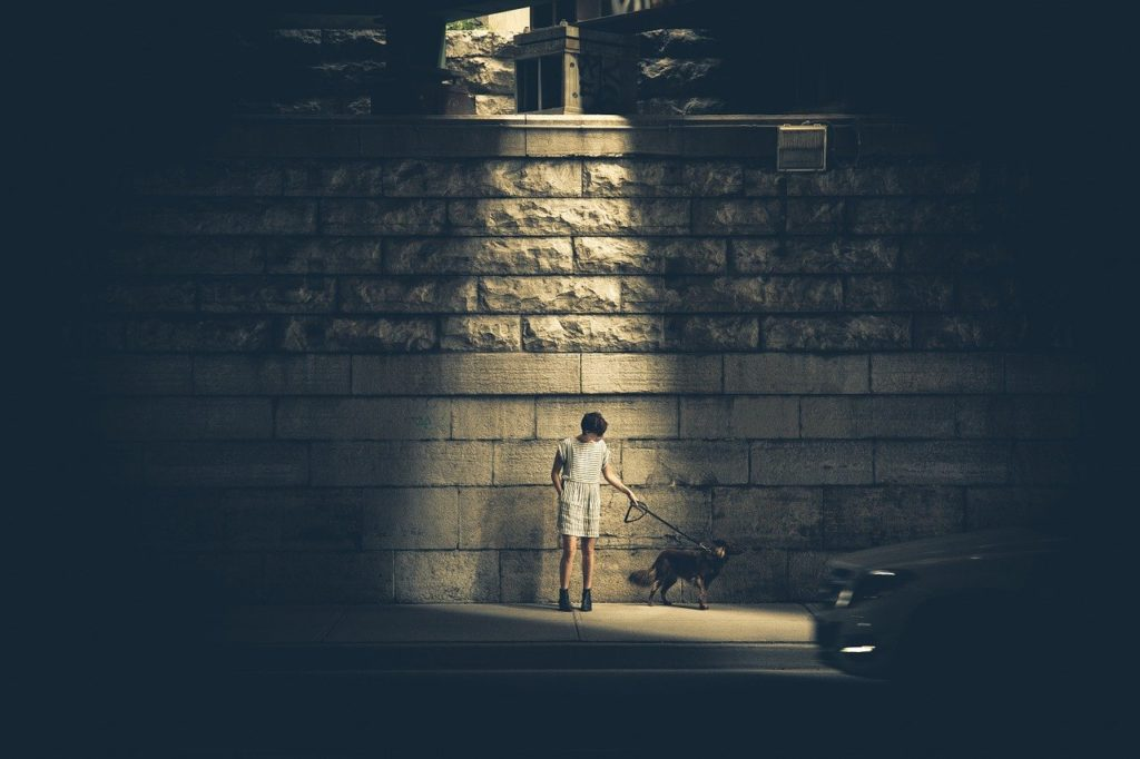 person, dog, urban
